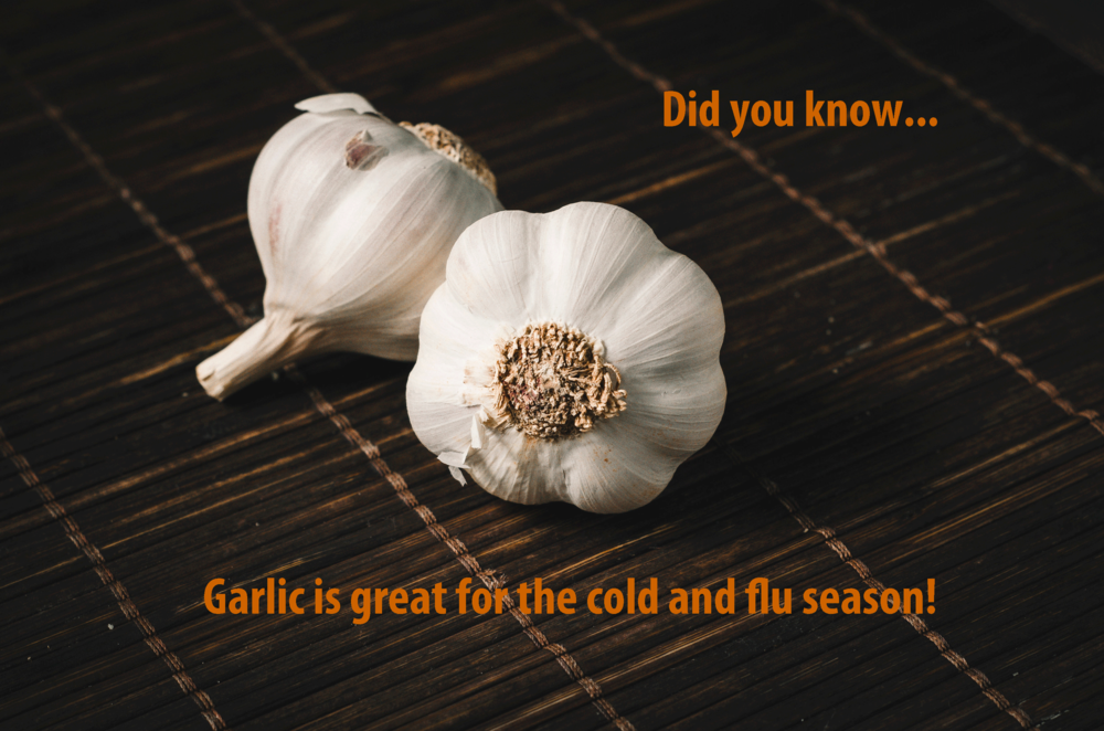 garlic-for-cold-season.png