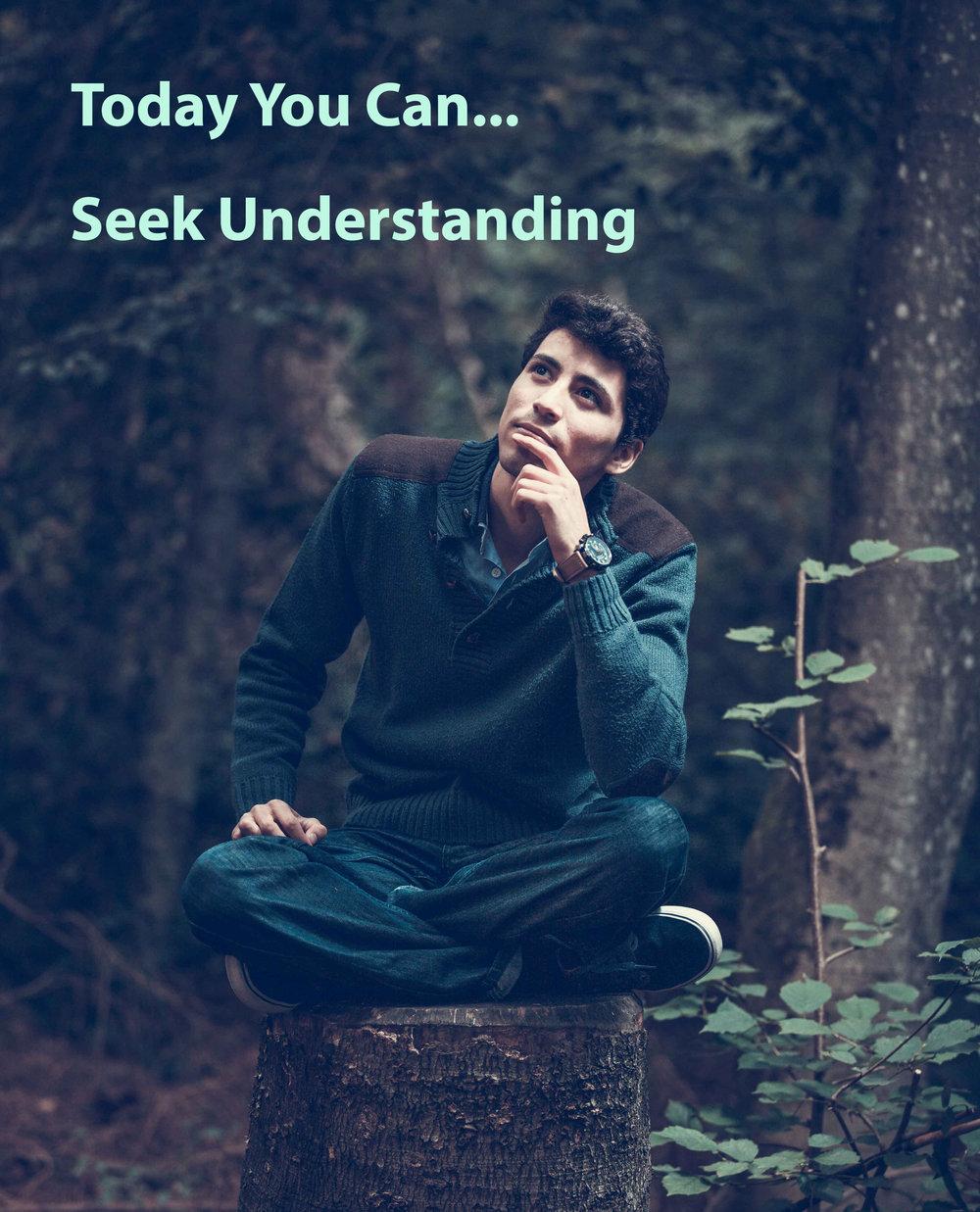 Seek understanding.jpg