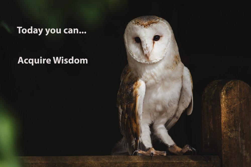 Acquire wisdom.jpg