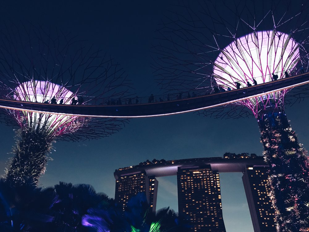 Super Trees & Marina Bay Sands, Singapore