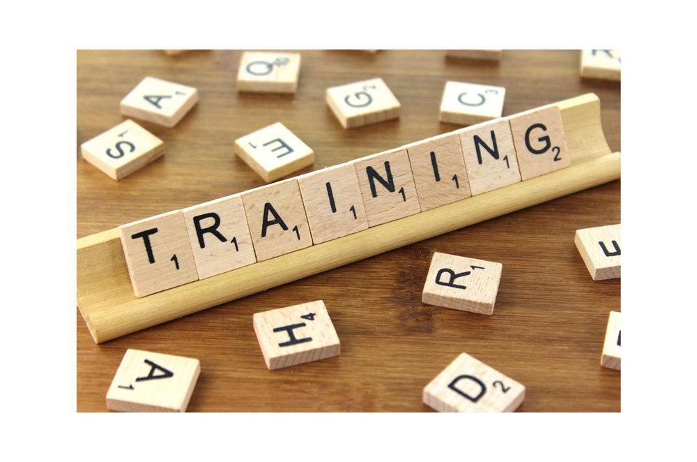 Teacher training.jpg