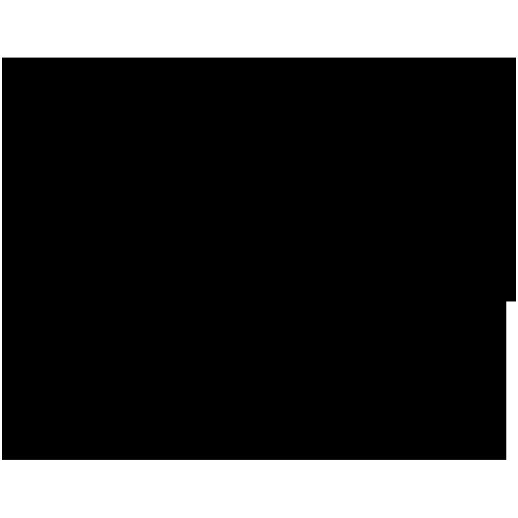 theelitecamp-black.png