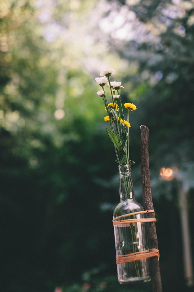 The Midsummer Mingle | Sycamore