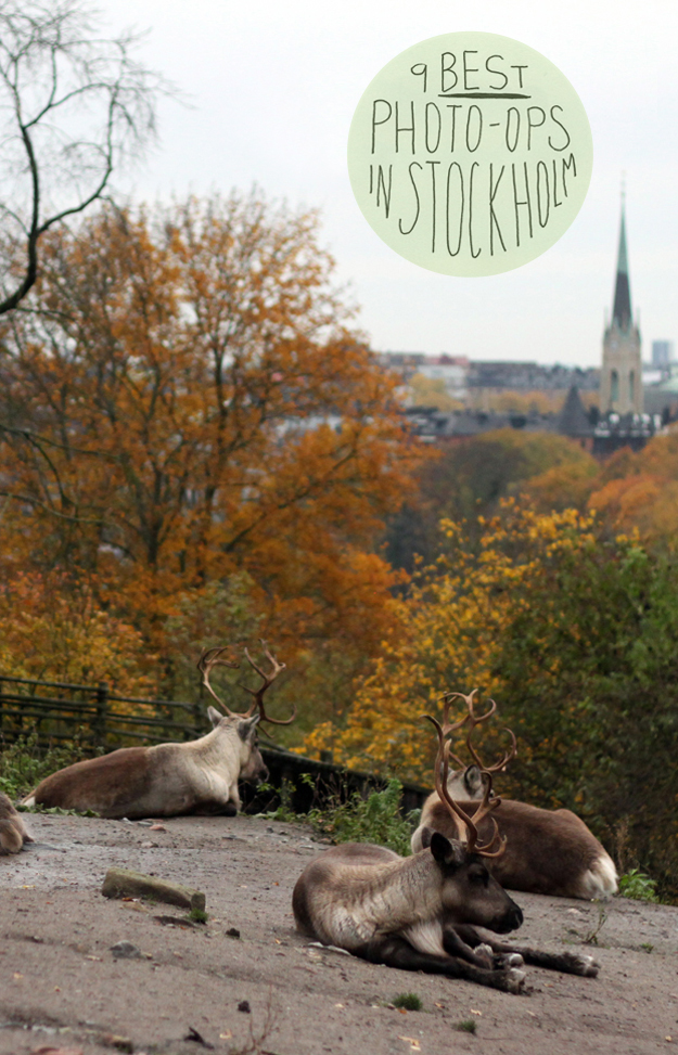 Skansen-9-Best-Photo-Ops-v1
