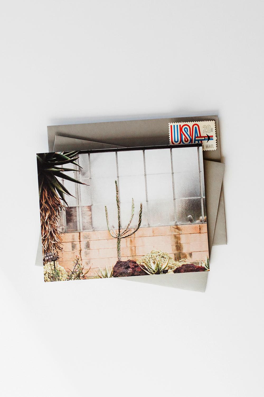 fc174-cactus-1-stamps.jpg