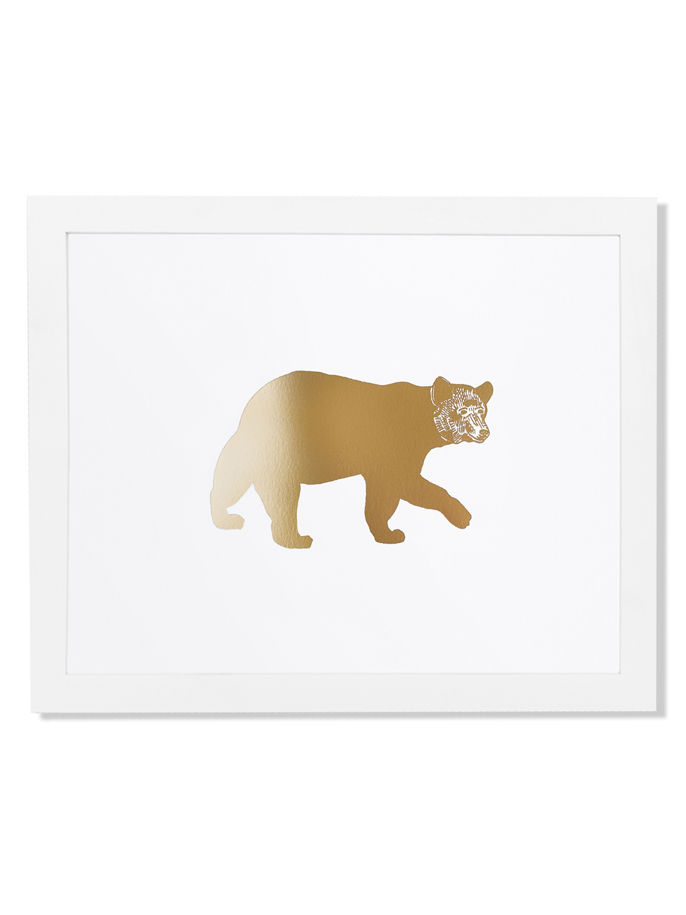 fp012-animal-bear.jpg