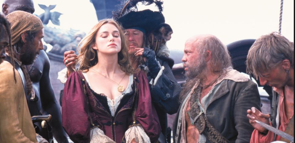 elizabeth swann plum pirate gown costume - Elizabeth swann purple barbossa costume dress  sc 1 st  Brielle Costumes : used pirate costumes  - Germanpascual.Com