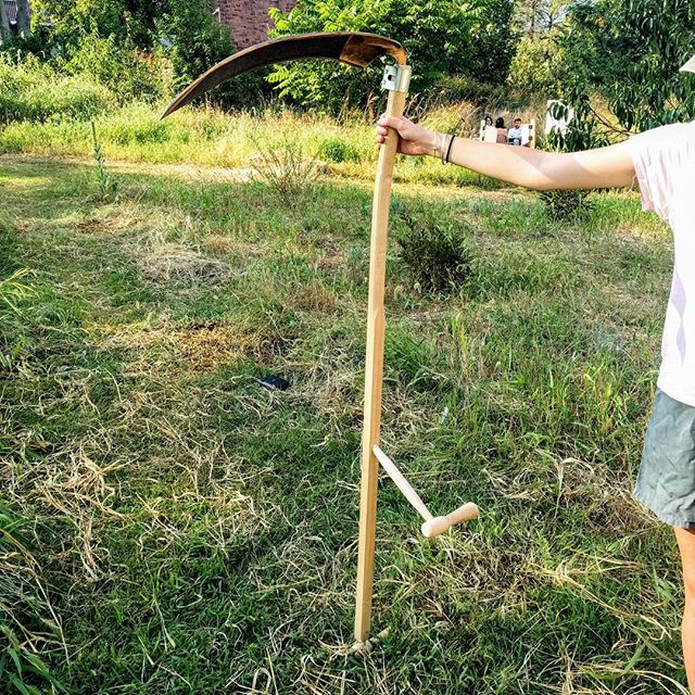 We bought a scythe that was hand-made up in Perry, Maine! We've been busy this month learning the proper techniques in order to reduce the amount of work needed in the courtyard while sticking to our commitment to not use any non-renewable fuels. #scythesupply #scythe #greenfund