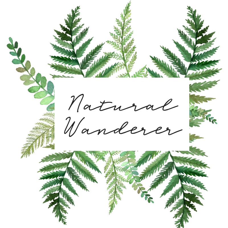 The Natural Wanderer