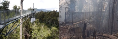 """The AirWalk—""""the next big tourist thing"""" of its day, built beside a river by Forestry Tasmania, the state's greatest and most wary fire-lighter, incinerated   Source:Sustainable Timbers Tasmania and Tas Fire Service."""