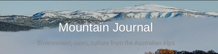 mountain_journal.jpg