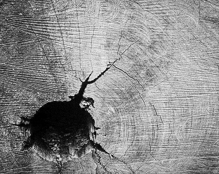 Film grain / wood grain. #nograinnoglory. Shot to #film on my 1938 Leica IIIa.