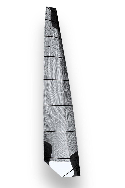 A-Class - DS MainsailDyneema Membrane9 battensPrice : 1950 €*