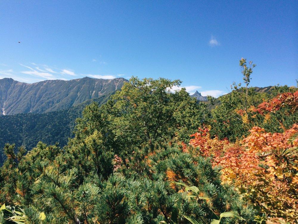 写真 2014-09-21 10 24 45.jpg