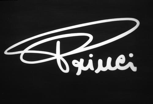 princi-logo.jpg