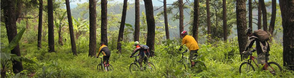 Main picture down hill mountainbike.jpg
