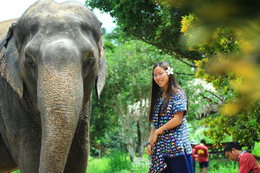 Kanta.Elephant (3).jpeg