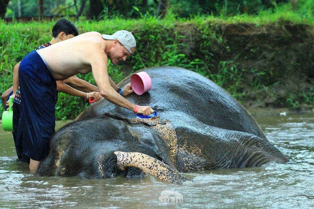 Kanta.Elephant (14).jpeg