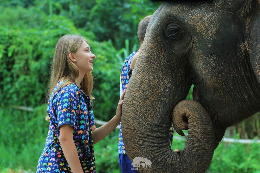 Kanta.Elephant (31).jpeg