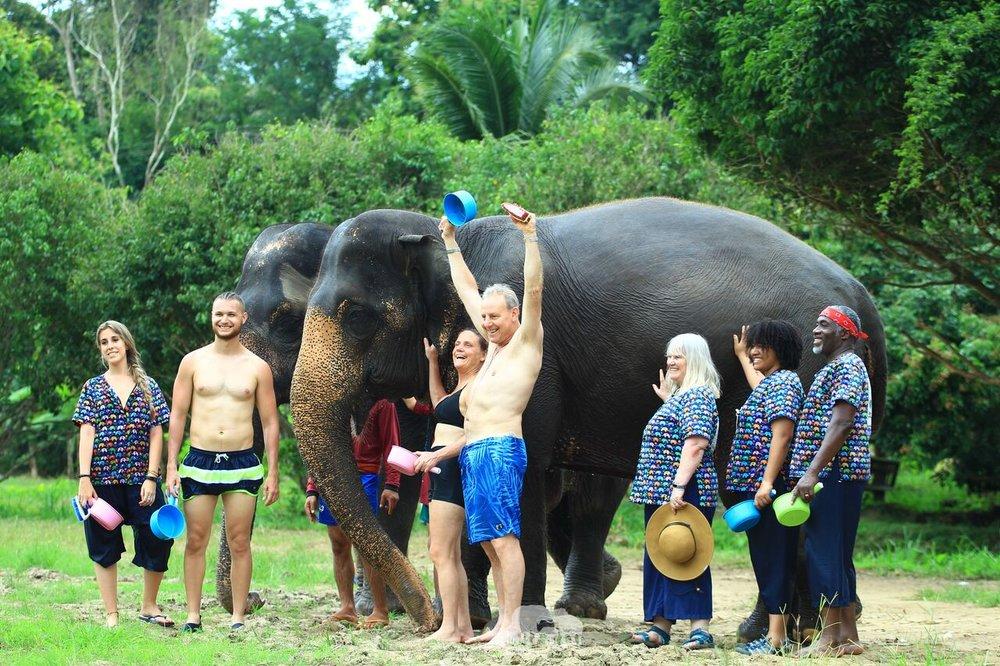 Kanta.Elephant (38).jpeg