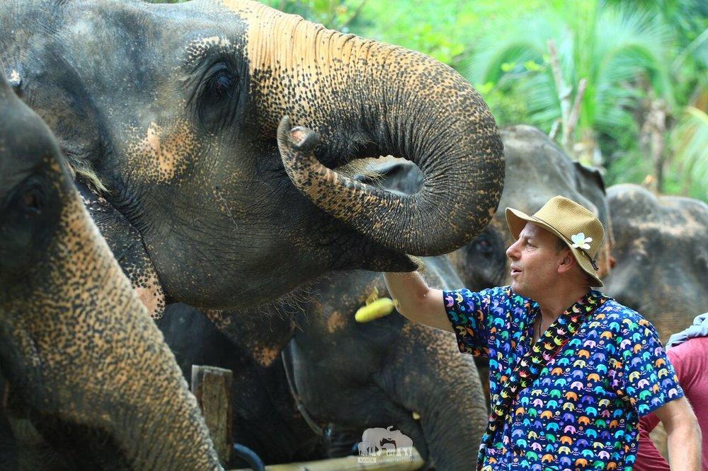 Kanta.Elephant (45).jpeg