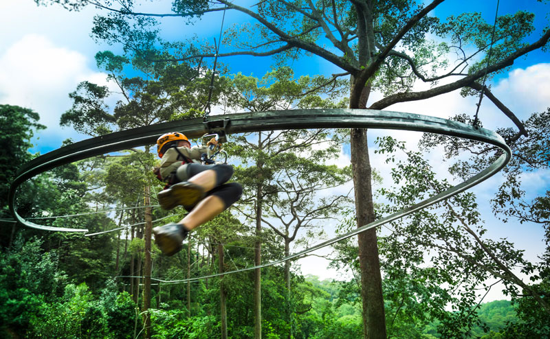 jungle-flight-roller-coaster-chiangmai-4.jpg