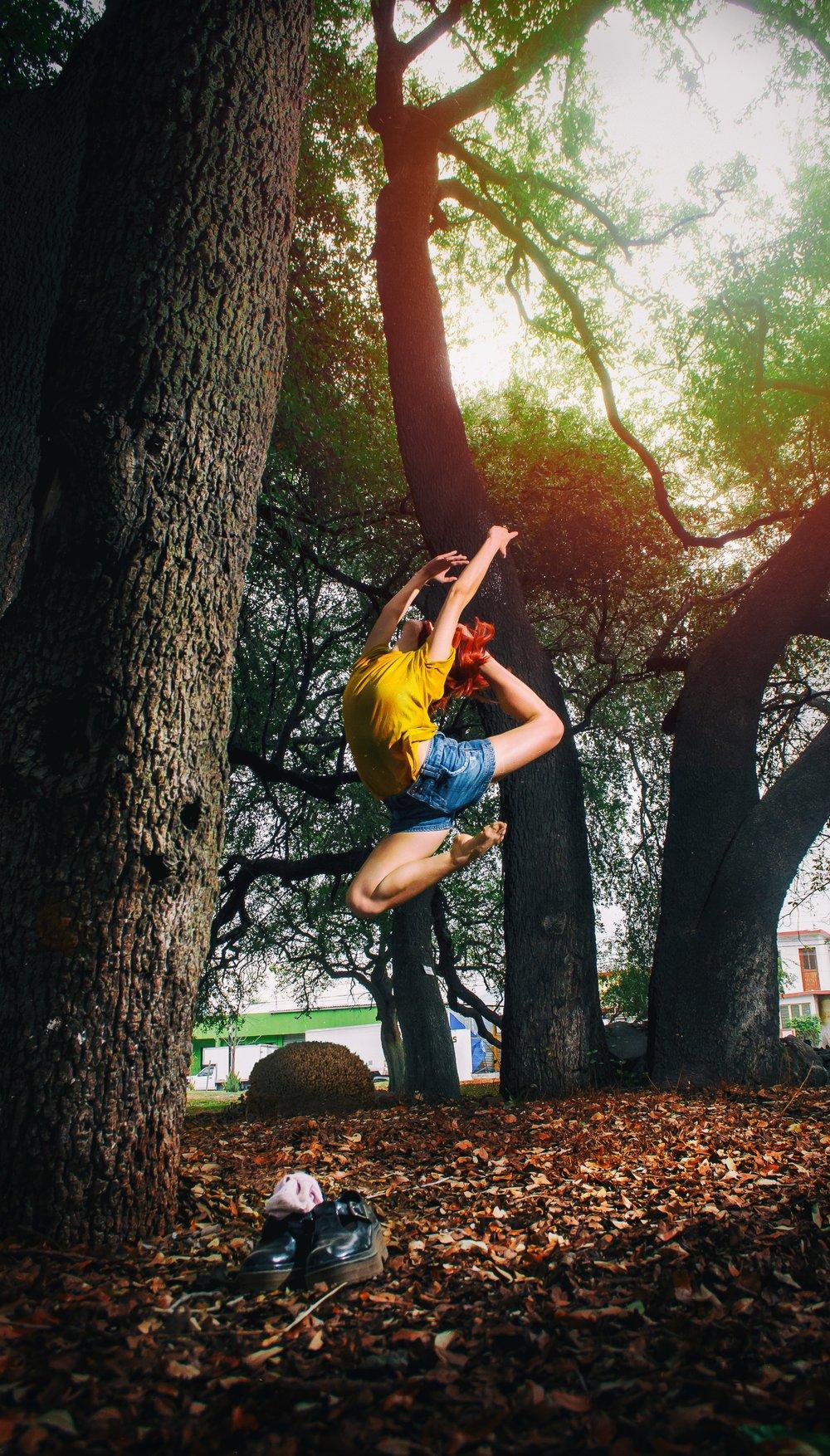 ballerina-ballet-ballet-dancer-910405.jpg