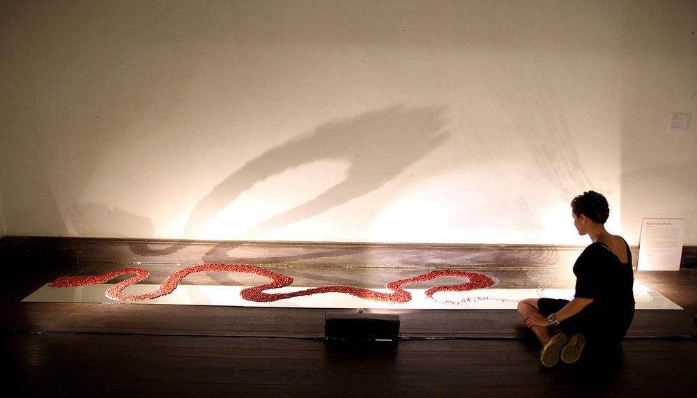 Pass It On (installation detail), Nicola Anthony, 2013