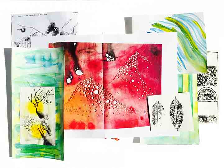 Inky adventure samples_white background _small.jpg