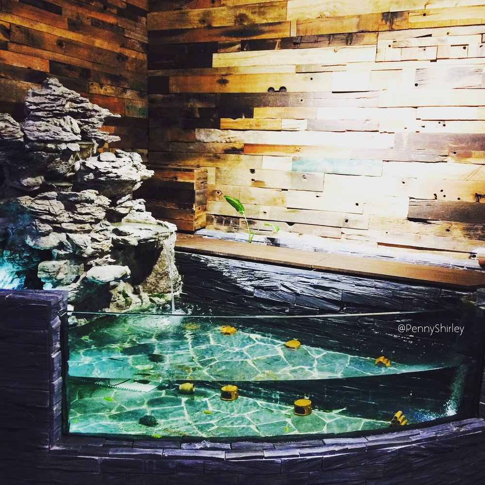 Indoor fish pond at the entrance of our Hong Kong HQ <3