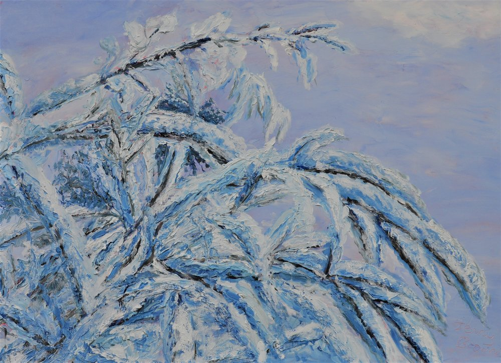 Snow-laden Branches Oil on Canvas 70x50cm