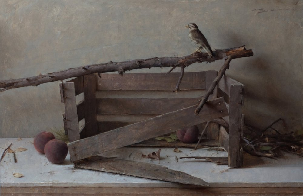 A.Venezia+Lost+Nest.jpg