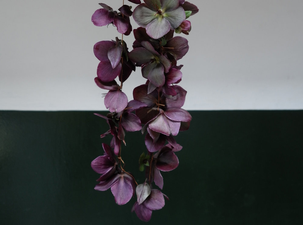 HELLEBORE LEI ON LEATHER/for a bare chested performance