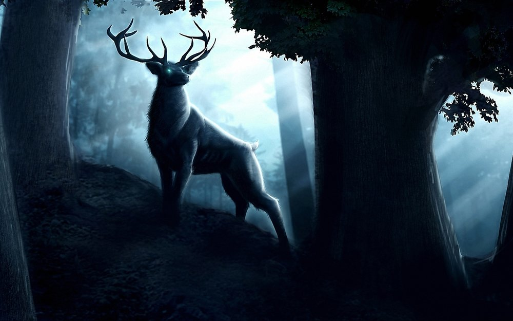 164787505-stag-wallpapers.jpg