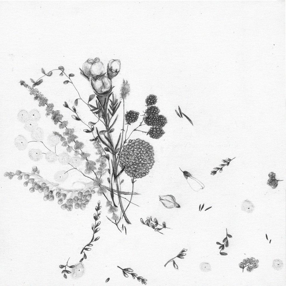 blomster9p.jpg