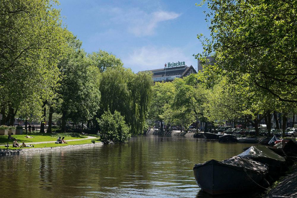 Heineken Photo (1).jpg