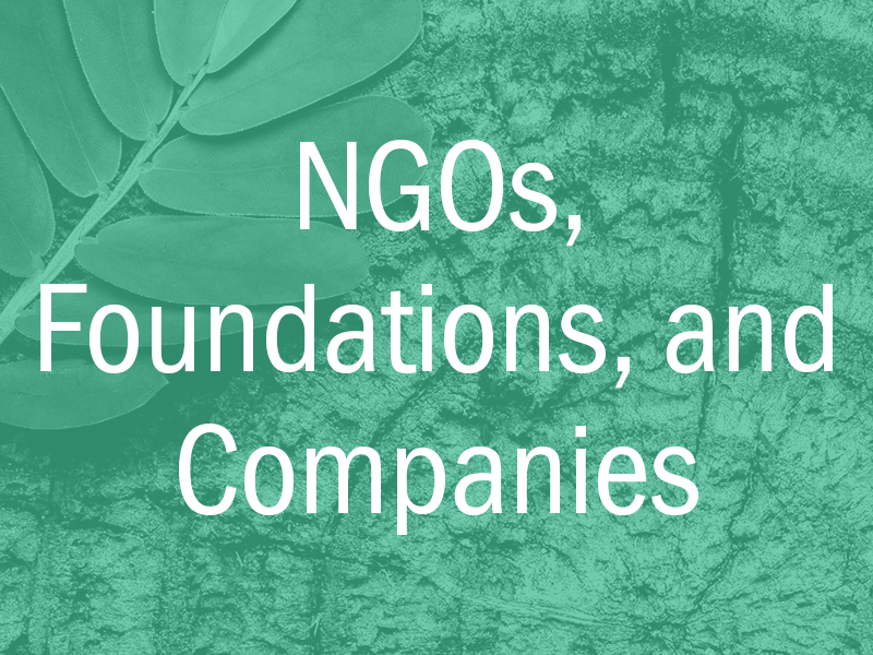 NGOs, foundations, companies