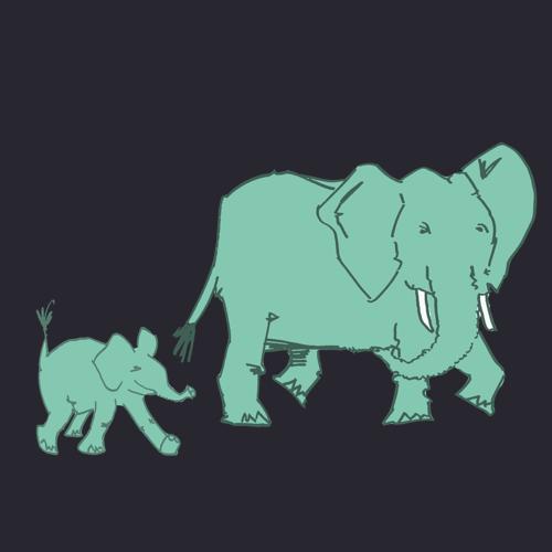 tropen-safari