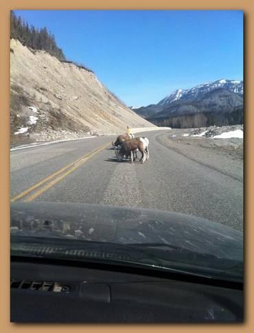 Ben-Davenport-Cornwall2Cape-Horn-Yukon Canada 6.jpg