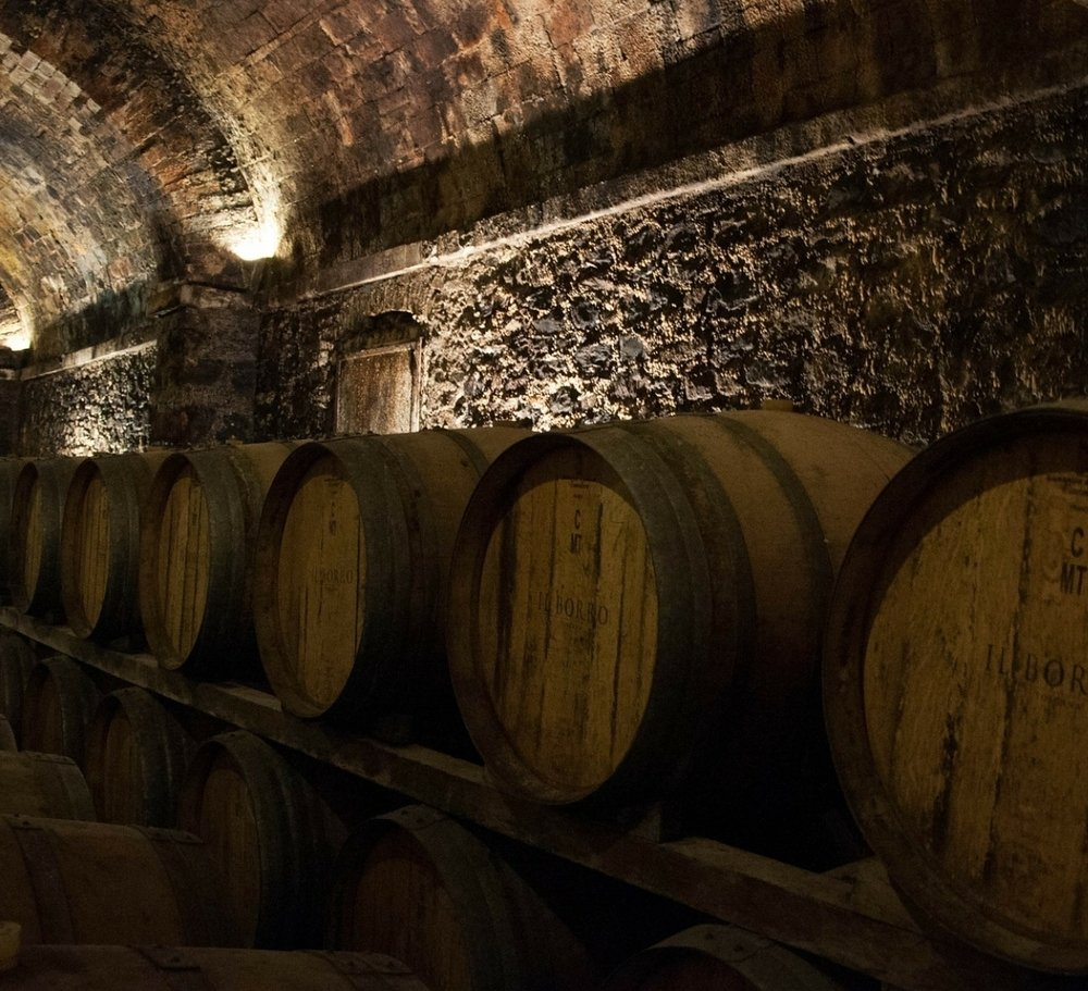 CELLAR MANAGEMENT -