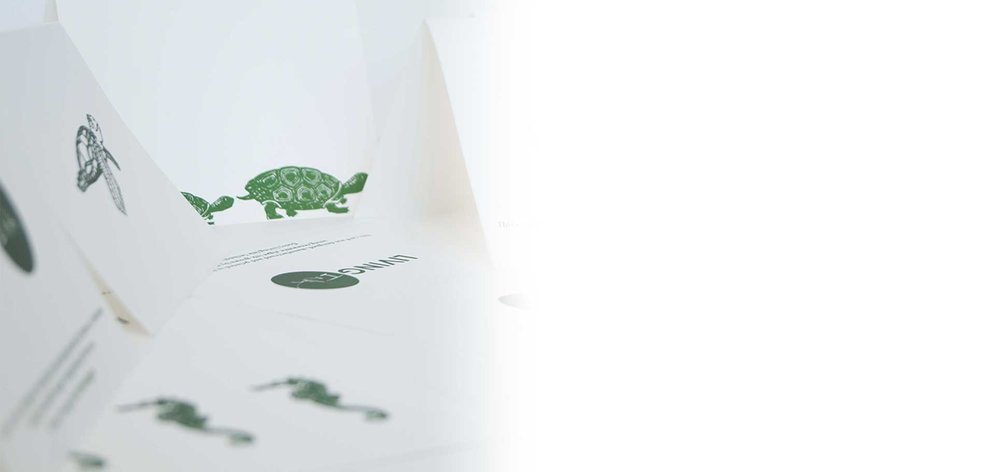 Algae Ink™ STATIONERy -