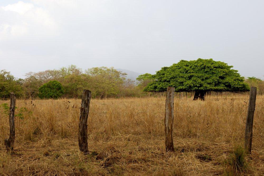 Costa Rica 2011.jpg