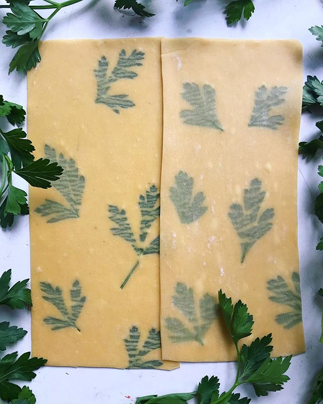 In love with these parsley pasta sheets for lasagna! Spend this rainy weekend trying out my recipe for Homemade Pasta with Edible Flowers/Herbs 💕 recipe link in my profile #messycooking • • • • •  #homemadepasta #howisummer #bareaders #feedfeed @feedfeed #imsomartha #edibledc #eattherainbow #abmlifeiscolorful #foodwinewomen #f52grams #lifeandthyme #buzzfeast #feastgram #thehappynow #eeeeeats #tastespotting #eatlocal #inmykitchen #walkwithlocals #onthetable #forkyeah #saveur #pasta
