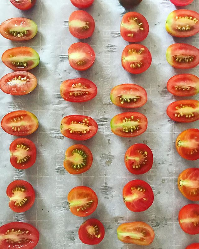 This is exclusively a tomato appreciation account now #messycooking