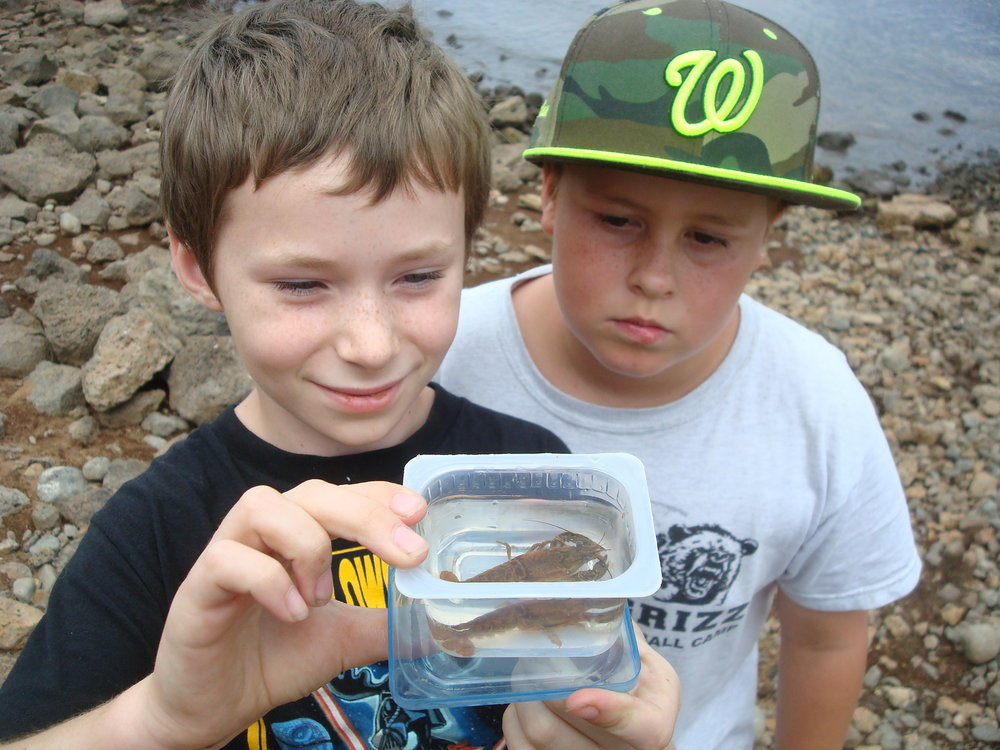 NatureCamp_Crayfish 1.JPG