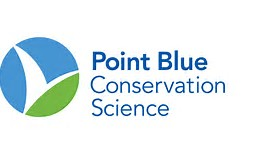 logo point blue.jpg
