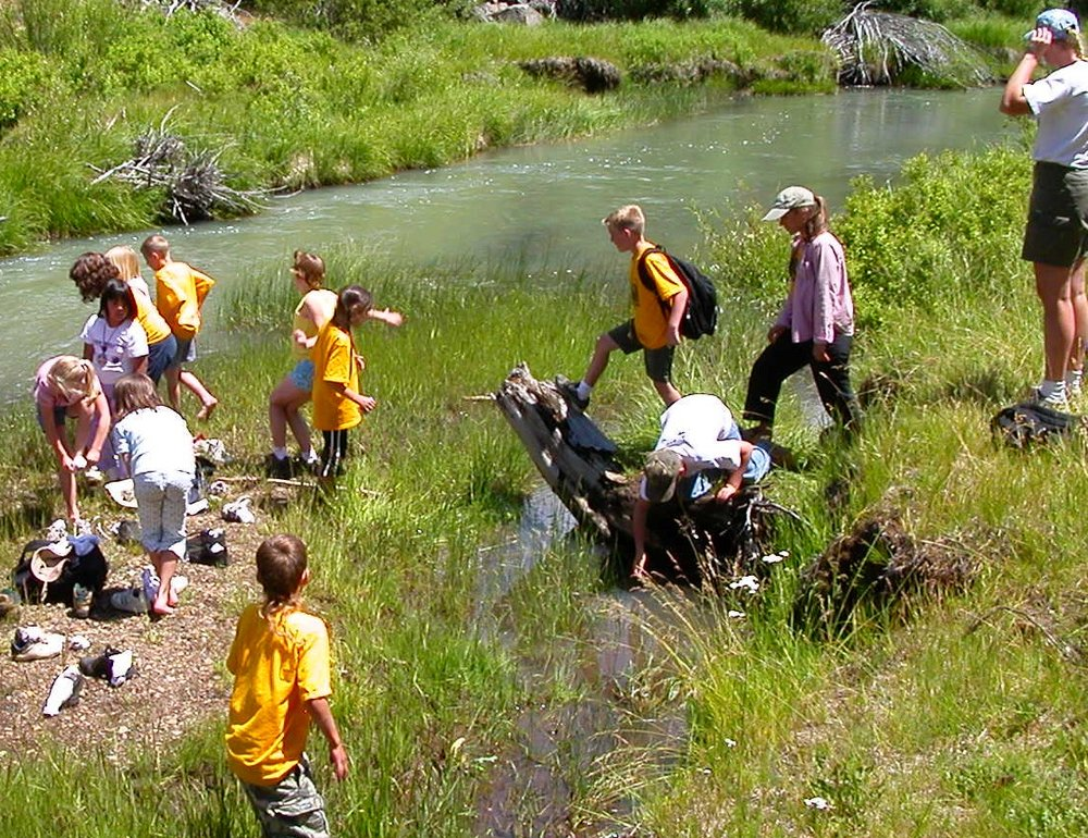Educ--youth Nature Camp; what's in our stream and rivers....jpg
