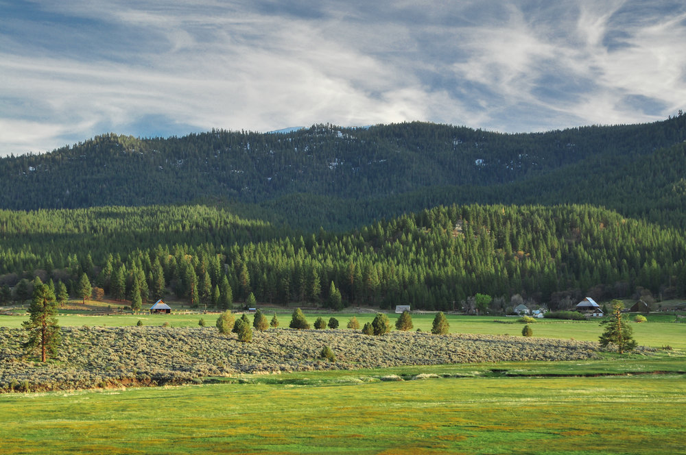 LCCA View of Hulsman.jpg