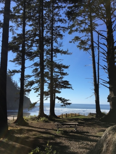 It's an easy hike through a lush forest down to Short Sands Beach in Oswald West State Park.