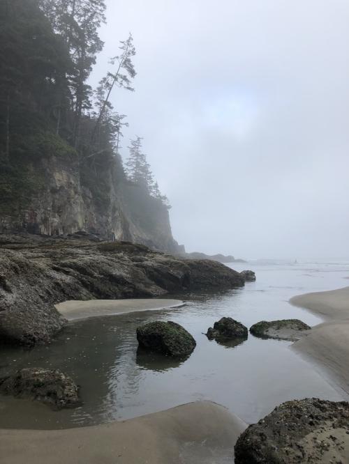 Short Sands Beach, Oswald West State Park, Oregon Coast
